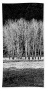 Silver Trees, Yosemite National Park Bath Towel