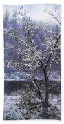 Snow Flowers Whimsy Bath Towel by Belinda Greb
