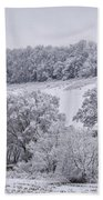 Snow Scene Bath Towel
