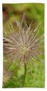 Spiky Plant Pulsatila Halleri Bath Towel