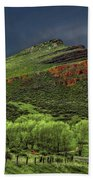 Spring Storm At Milepost 84 Bath Towel