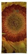 Sunflower Splendor Bath Towel by Judy Hall-Folde