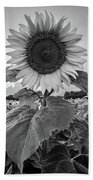 Sunflowers 10 Bath Towel