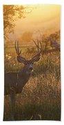 Sunset Deer Bath Towel