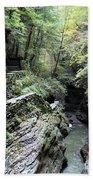 The Gorge Trail Bath Towel