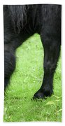 The Grass Is Greener Here. The Black Pony Bath Towel