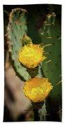 The Yellow Rose Of Arizona Hand Towel by Rick Furmanek