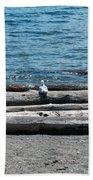 Three Gulls On A Log Hand Towel