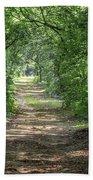 Through The Forest Bath Towel by Dale Kincaid