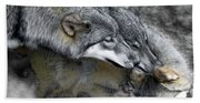 Timber Wolves Up Close Bath Towel