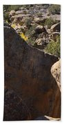 Top Of Rocks Above Canyon In Fall Bath Towel