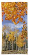 Touch Of Fall Hand Towel