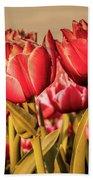 Tulip Fields Bath Towel by Anjo Ten Kate