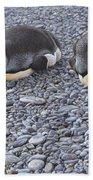 Two King Penguins By Alan M Hunt Bath Towel
