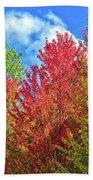 Vibrant Autumn Hues At Cornell University - Ithaca, New York Bath Sheet