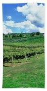 Vineyard, Whangarei, Northland, New Hand Towel