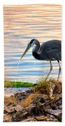 Wheeler Oregon - Great Blue Heron Bath Towel