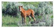 Wild Horse Foal Bath Towel