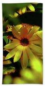 Wild Sunflower Hand Towel