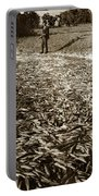 A Run Of Squawfish Stranded In Kelsey Creek Near Kelseyville Lake County April 29 1899 Portable Battery Charger