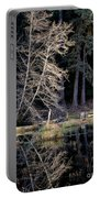 Alder Tree Reflection In Pond Portable Battery Charger