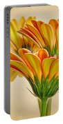 Daisies In Triplicate Portable Battery Charger
