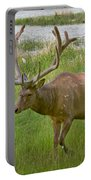 Elk At Pond Edge Portable Battery Charger