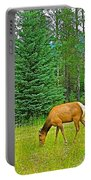 Elk Near Wapiti Campground In Jasper Np-alberta Portable Battery Charger