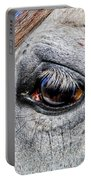 Eye Of A Horse Portable Battery Charger