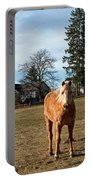 Horse Unbrideled Portable Battery Charger