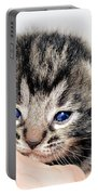 Kitten In A Hand Portable Battery Charger