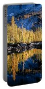 Larch Tree Reflection  Portable Battery Charger