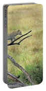 Leopard Cub In Serengeti Portable Battery Charger