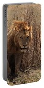 Lions Of The Ngorongoro Crater Portable Battery Charger