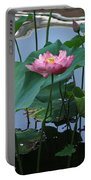 Lotus Flower At Calloway Portable Battery Charger