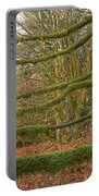 Moss-covered Big Leaf Maple Branches Portable Battery Charger