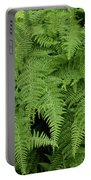 Mountain Ferns Of North Carolina Portable Battery Charger