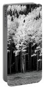 New Mexico Aspens Portable Battery Charger