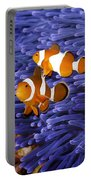 Ocellaris Clownfish Portable Battery Charger