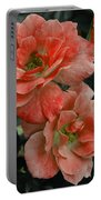 Rose Red Portable Battery Charger