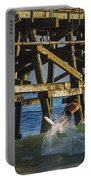 Surfer Dude 5 Portable Battery Charger