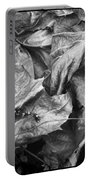 Sycamore Leaves In Autumn Portable Battery Charger