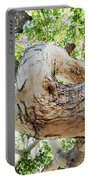 Sycamore Tree's Twisted Trunk Portable Battery Charger