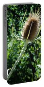 Thistle Plant Portable Battery Charger