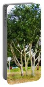 Trees In A Suburban Neighborhood In Summer Portable Battery Charger