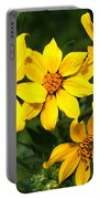Yellow Texas Wildflowers Portable Battery Charger