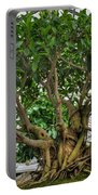001 Bonsai Summer Show Buffalo Botanical Gardens Series Portable Battery Charger