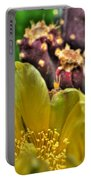 001 For The Cactus Lover In You Buffalo Botanical Gardens Series Portable Battery Charger