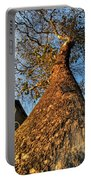 001 Oldest Tree Believed To Be Here In The Q.c. Series Portable Battery Charger