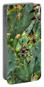 002 For The Cactus Lover In You Buffalo Botanical Gardens Series Portable Battery Charger
